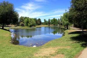Auburn Regional Park | Auburn, CA